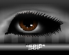 -Chocolate Eyes [M]-