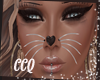 [CCQ]Meow Whiskers
