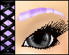 *VC* Eyebrows Lavender