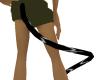 Black Tiger Tail ( M/F )