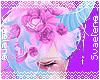 Unicorn Tears Crown