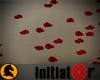 ♞ Floor of Petals