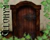 ~E- Medieval Door