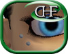 HFD Antibrow Single F