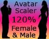 120% Resizer Avi Scaler