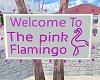 Pink Flamingo Sign