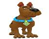 Scooby Doo Avi M/F