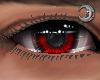 Crimson King Eyes