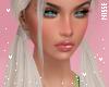 n| Domino Ash
