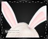 {S}  Bunny Ears [W]