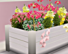 L* Spring Planter