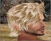 Blond Sage Hair