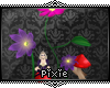 |Px| Wonderland Flowers