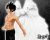 ! Animated Angel Wings