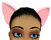 Pink Cats Ears