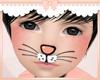 KID Cat Nose