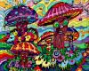 ☾ hippie