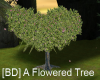 [BD] A flowered tree