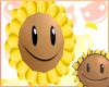 ~R~ Sunflower <3