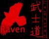Gaze Of The Raven