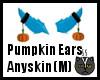 Anyskin Pumpkin Ears (M)