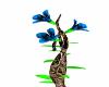 safari flower