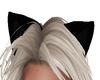 [IM] Kitten Ears