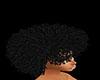 hair disco
