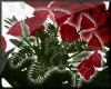 Any vase roses