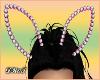 D- Diamond C Bunny Ears