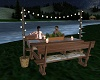 Lighted Picnic Bench