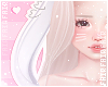 F. Bunny Ears W/White