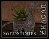 [Z] Sandstones Succulent