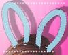 Bunny Ears T