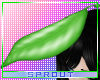ⓢ Head Leaf