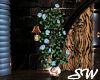 STC Blue Roses