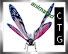 CTG ANIMATED BUTTERFLY