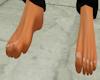 DF-Male Feet