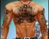 Pro Muscle Tats