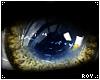 Yellow Circle Lens