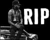 RIP NIP THE GREAT