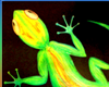 RobArt Gecko