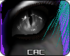 [CAC] Spoteeh Eyes M/F