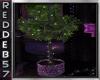 Purple Fuchsia Lit Tree