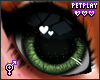 🍁 Fox Eyes 3