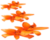 Orange Tulips -L