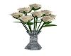 Ivory Long Stem Roses