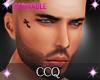 [CCQ]Chris Model Tat