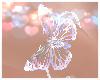 🦋 Femboy Flutter