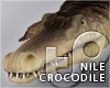 TP Nile Crocodile
